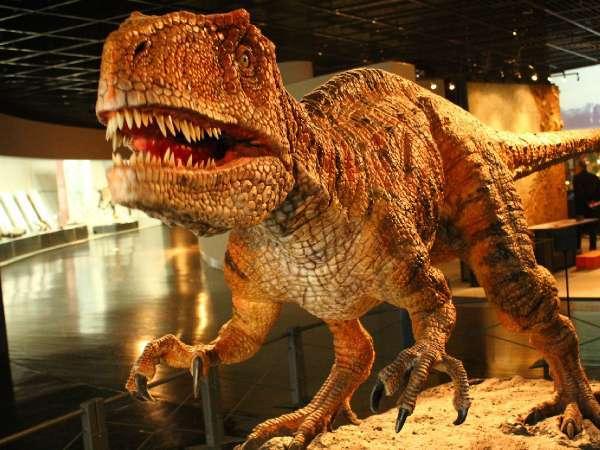 福井県立恐竜博物館は子供から大人まで大人気の観光スポット★車で約5分