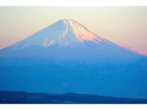 お庭や殆どの客室から見える日本一の富士山