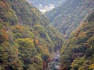 祖谷渓谷からの秘境の湯