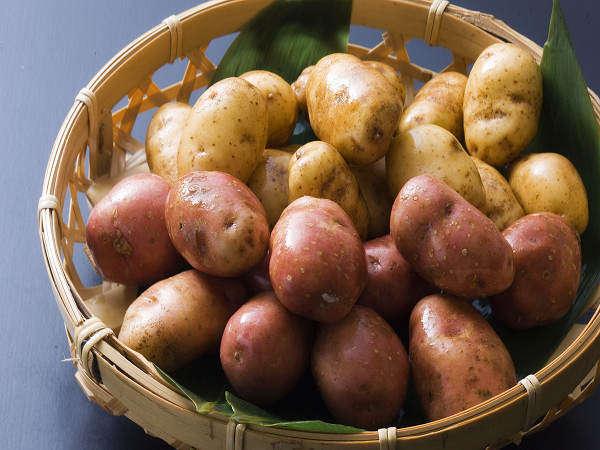 祖谷の源平芋、秋から冬の季節物♪ほっこりとした甘さは芋の中でも郡を抜く甘さです♪