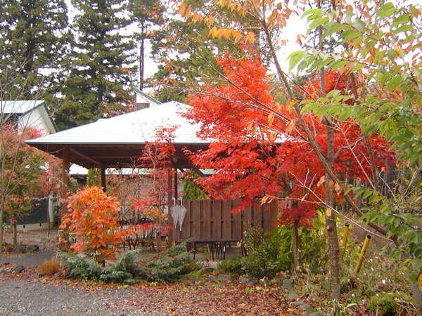 星と森と紅葉に包まれた中でのBBQやなべパーティーは最高で~す。(*^_^*)