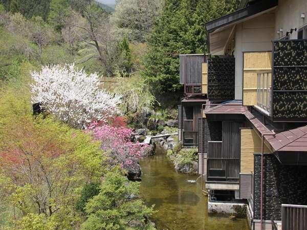 『奥の院ほてる とく川』本館 基本宿泊プラン
