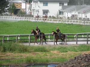 ファミリ-ロッジから見る競走馬の調教風景
