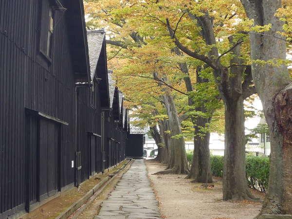 山居倉庫裏、紅葉の欅並木