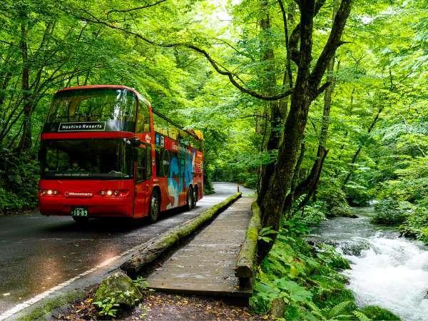【渓流オープンバスツアー】オープンエアの2階建てバスに乗り、360度の絶景を存分に楽しめます。