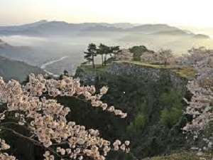 【但馬満喫プラン】竹田城に、出石そばに、コウノトリ、全部満喫プラン