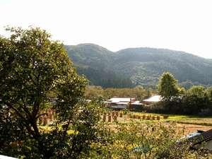 こんもりした山林と広がる田園風景は当館おすすめの眺めです。自炊客室から里山の原風景はいかがでしょう