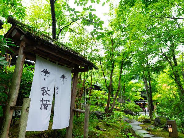 温泉街に近い便利な立地ながら、草木に囲まれた静かな環境。