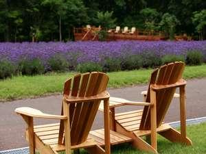 敷地内随所に設けた椅子に座り富良野の風を感じてください