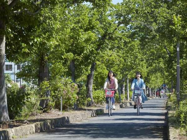 ■観光:まほろばの緑道(約6km)散策やサイクリングに最適です!レンタサイクル(有料)太陽館貸出し有り。