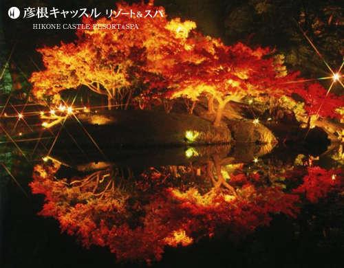 1泊2食付 幻想的な光の演出 「錦秋の玄宮園ライトアップ」と近江旬の和食会席