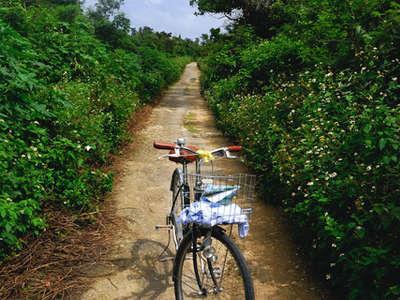 【離島パック】竹富島◆サイクリングフリーステイ