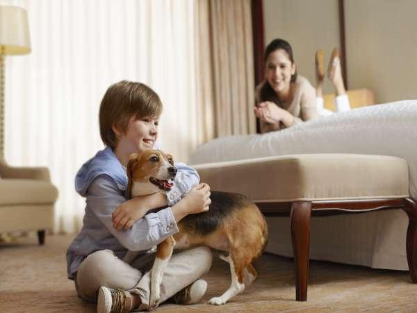 【愛犬と一緒にリゾートステイ 】シェラトングッドプライス 室料のみ