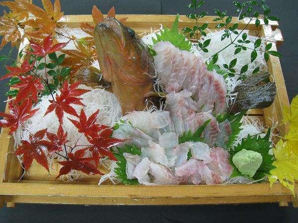 【活魚の姿造り】★佐渡の地魚!抜群の鮮度&食感を楽しむ★佐渡活魚海鮮御膳