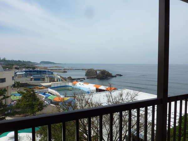 すぐお隣が越前松島水族館です。イルカが遊んでいる姿もみえますよ~