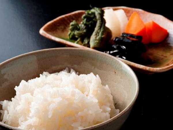 契約農家から直接購入する【こしひかり】水もうまいから米もうまい!