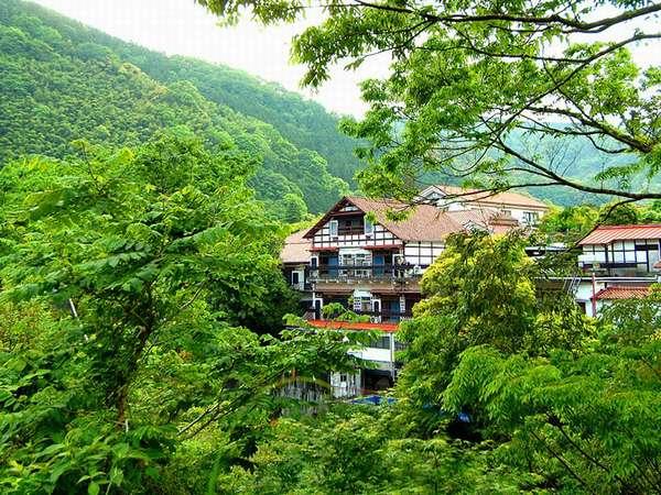 白壁荘 源泉掛け流し巨石・巨木露天とわさび料理の宿