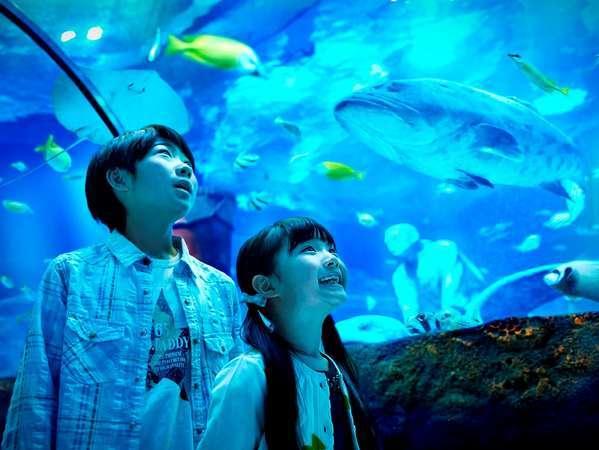 【ファミリーにお勧め】LEGOLAND(R)Japanコンボ1DAYパスポート付 LEGOLANDとSEA LIFE両方楽しもう(宿泊)