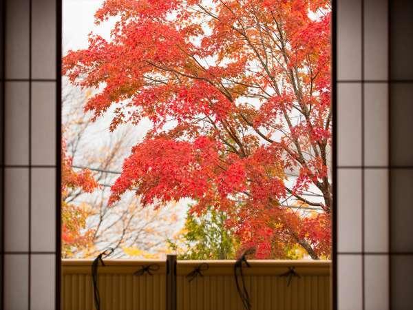 【山側客室】日光国立公園内に位置するお部屋から 写真提供:じゃらんnet