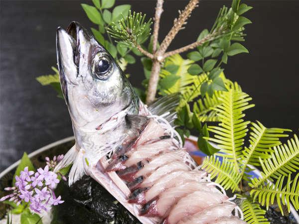 【幕末維新博記念】足摺岬で一本釣りされた《土佐清水サバ》を存分に堪能できる美味プラン!