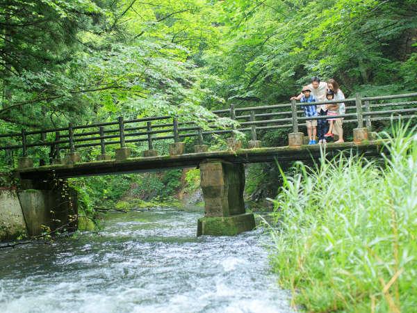 【釜淵の滝】イーハトーブの風景地「釜淵の滝」遊歩道は散策コースにおすすめ!
