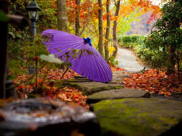 【夢静香】静寂の中四季が織り成す空気をお愉しみください