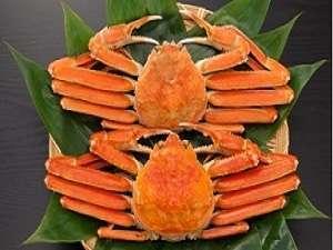 冬の期間限定!!冬の味覚がたっぷり味わえる得トク♪ずわい蟹会席プラン♪