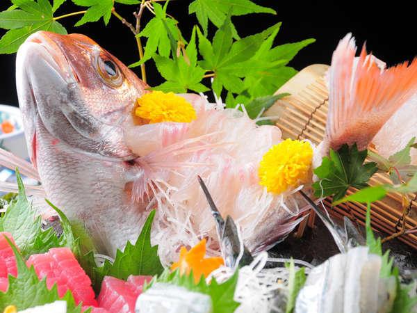 近海鯛は姿造りで食べるのがお薦め◎