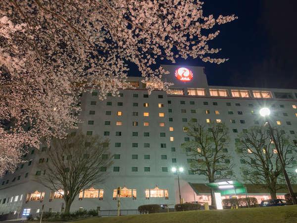 夜桜とともに映る外観
