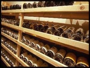 300種あまりのワインがグラスに注がれる日を待っています。