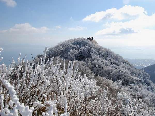 The Start of New Year 〜1月 2月限定の誘い〜【洋食ディナー】