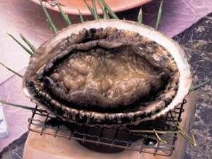 【活きアワビをお好みの調理法で】新鮮とれぴち満喫プラン