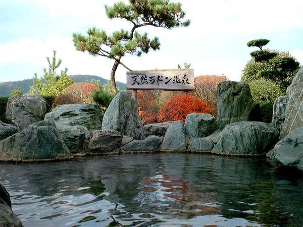 ■素泊■気ままにぶらり♪天然泉で疲れ一掃!温泉で癒されよう