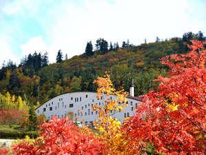 秋には素晴らしい紅葉が楽しめます
