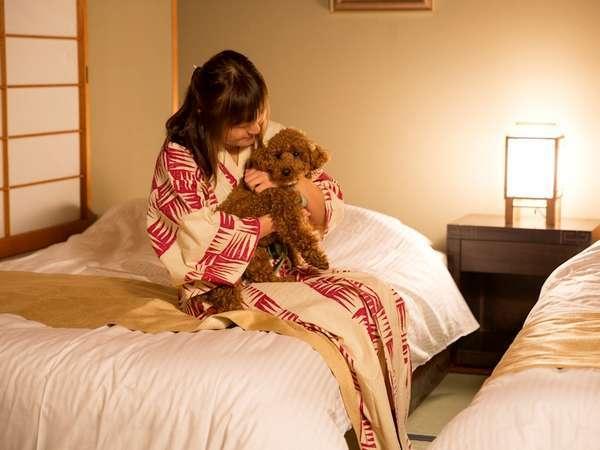 【客室内】ワンちゃんは客室では基本的には自由にしていただいております。ご一緒におくつろぎください。