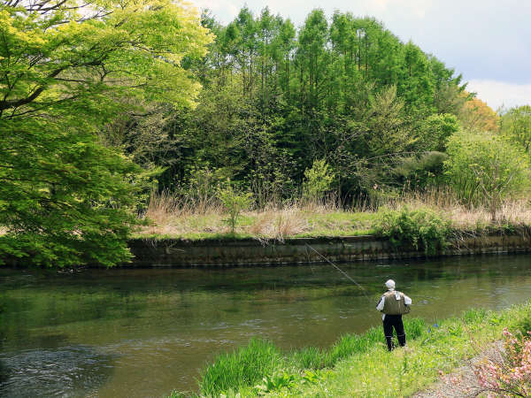 美しい自然の中を歩いてみてください!写真映えする風景です♪