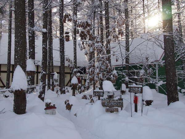 宿の全景(冬)
