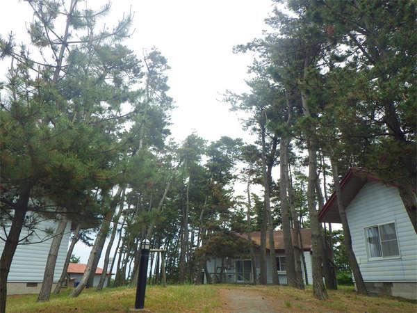 海が目の前!宮沢海岸を見下ろす小高い丘に建つコテージ【夕陽温泉WAOご利用可能】