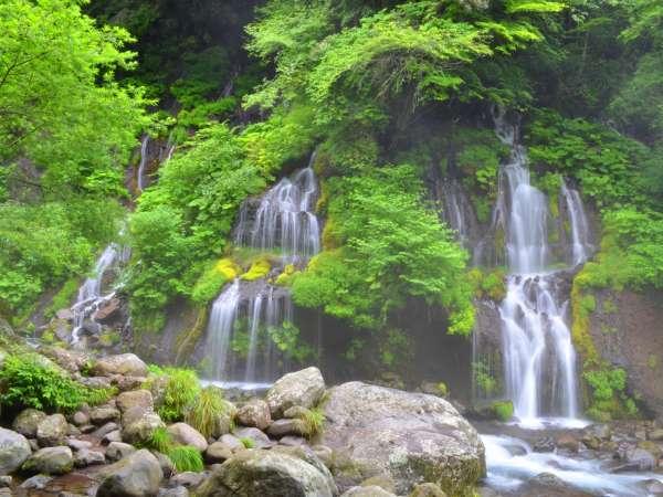 吐竜の滝です。美しい自然と爽やかな空気をお楽しみいただけます。