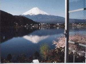 お部屋から湖と冨士山が一望