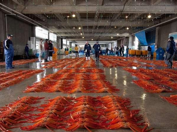 【1泊2食・部屋食】【日本唯一!】新湊蟹の昼セリ見学とホックホク茹でたて蟹を食べれるプラン♪