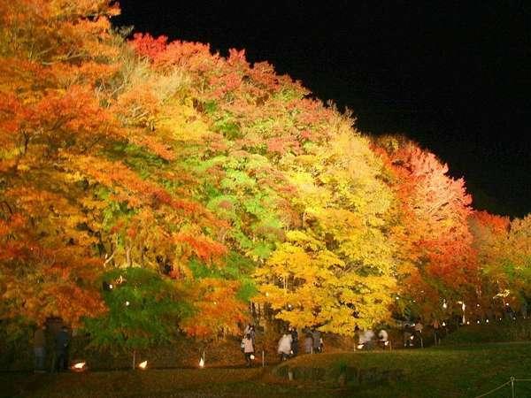 秋のもみじ回廊。コテージの目前です。