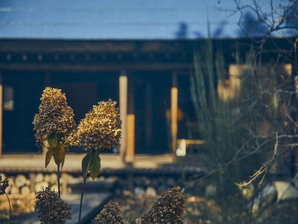 秋冬のお庭