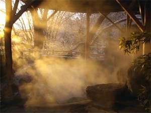 山沿い露天風呂【水芭蕉の湯】冬の朝。朝日に湯けむりが温かい