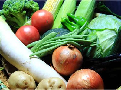 当館の専用農園で丁寧に作られた「採れたて新鮮野菜」
