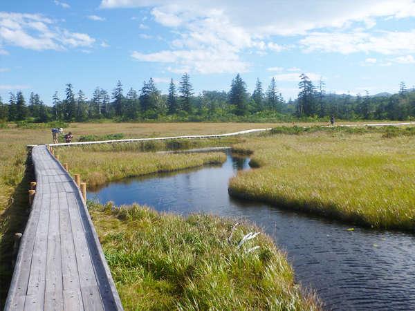 【ハイキング】ニセコの大自然を満喫。