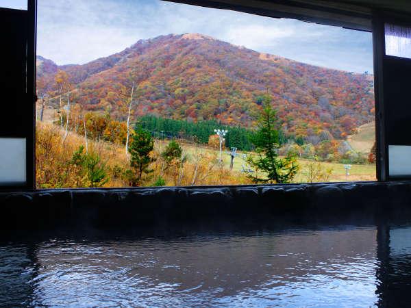 ★秋の紅葉が美しい展望風呂!!山々が色づきだした四季の移ろいを感じてください◎