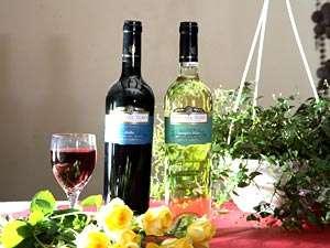 湖畔の休日 コースディナー&有機栽培ワインで乾杯!