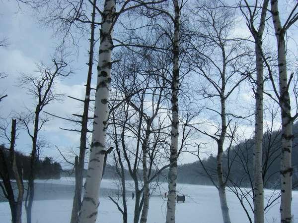湯の湖 【冬】