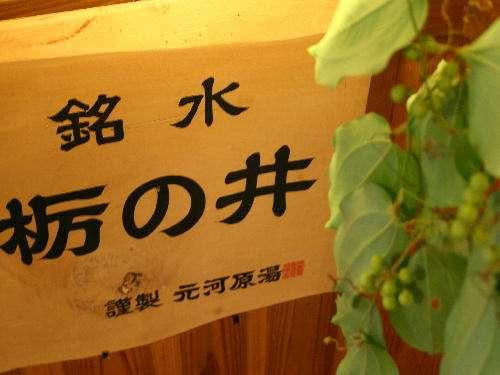 【5つの特典付】ワクワク秘湯旅★美味しい女子会プラン